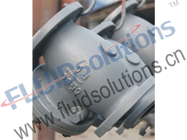 Marine Cast Iron Check Valve