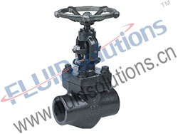 API602-Forged-Steel-ThreadedSocket-Welding-Globe-Valve-800