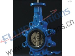 Lug Concentric Butterfly Valve